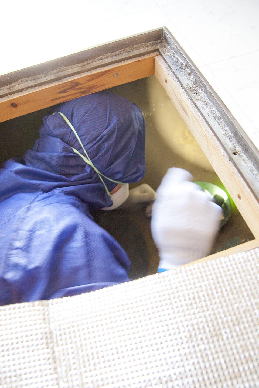 床下に関する検査について(オプション)