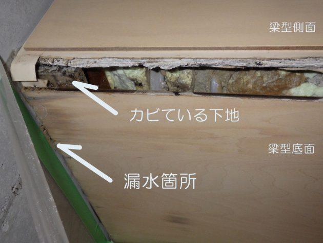 梁型の底面を開口したところ
